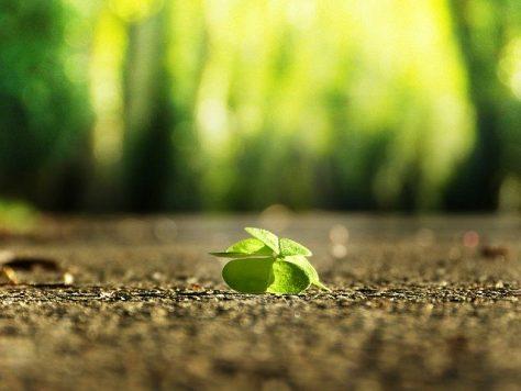 Realistischer Optimismus: 2. Schlüssel der  Resilienz